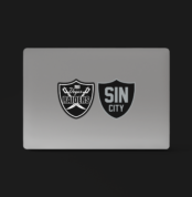 Vegas Raiders Sticker Pack: 4 Stickers for $10